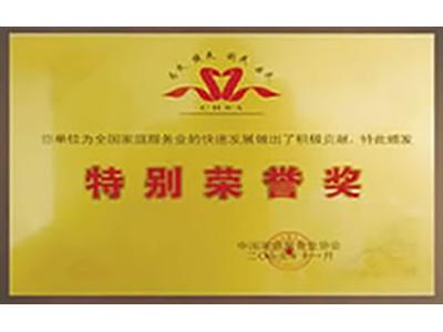 第壹管家-特别荣誉奖证书